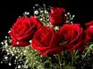 ../images/Bouquet-of-red-roses-105.jpg
