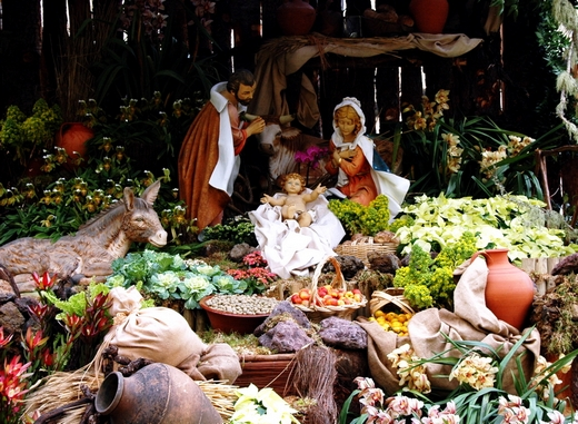 ../images/Christmas-nativity-display.jpg