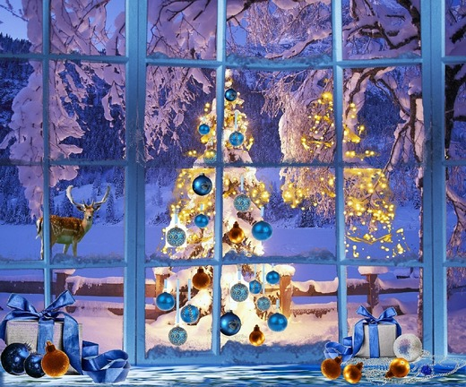 ../images/Christmas-tree-in-window.jpg