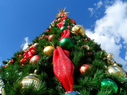 ../images/Christmas-tree-triangular-shape.jpg