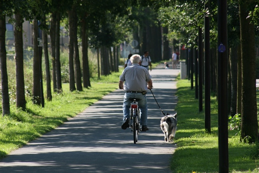 Man cycling through park with a dog