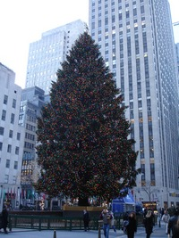 ../images/Rockefeller-Christmas-tree-200.jpg
