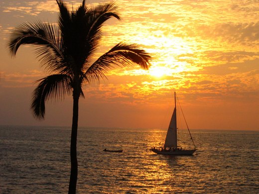 Sun setting in tropics, with a palm tree and a small sailing boat on the sea